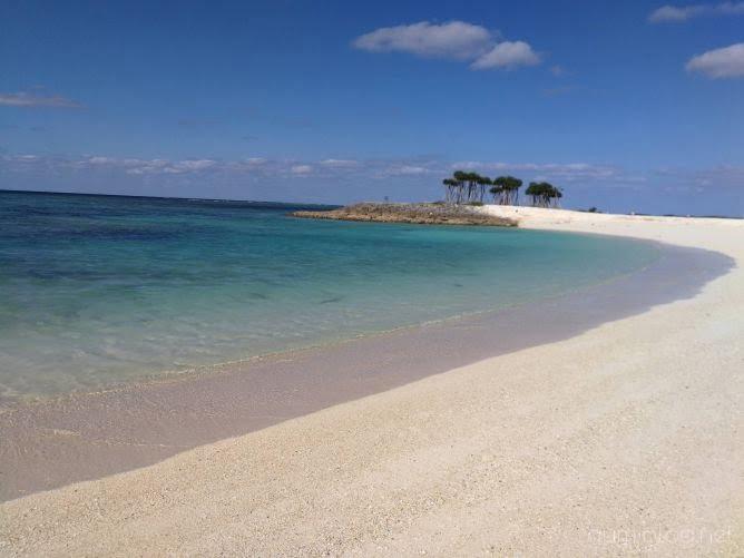 沖縄まとめ画像