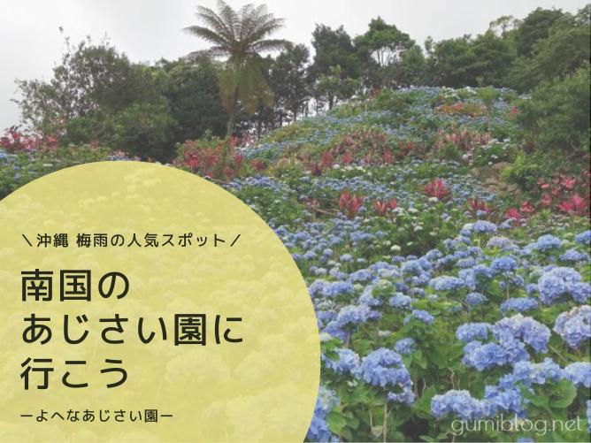 梅雨の人気スポット!南国のお花も楽しめる【よへなあじさい園】本部