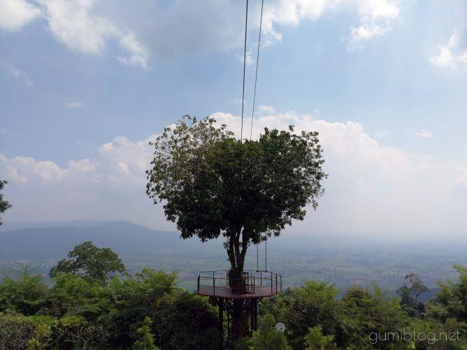 ハートの木がある絶景カフェ【Bansuan Chomview】タイ・ピッサヌロークアイキャッチ画像