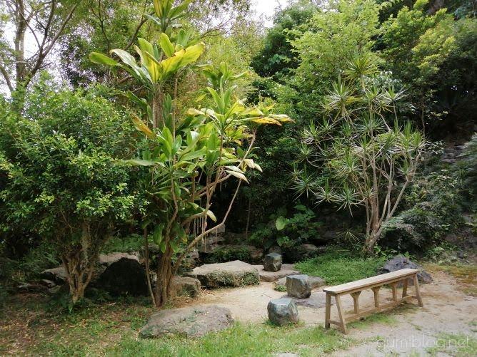 森にひっそり佇む焼き菓子店「Himbeere(ヒムベーレ)」@沖縄本島本部のお庭の席画像