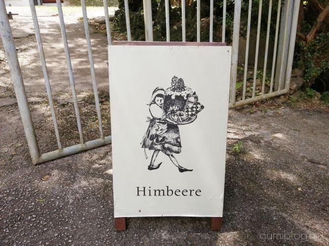 ネコが出迎えてくれる!森にひっそり佇む焼き菓子店【Himbeere】本部