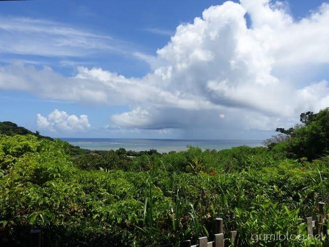 オーシャンビューの「沖縄そば峰」のカウンター席からの眺め