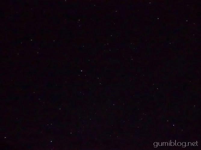 平久保サガリバナ群落のサガリバナと星空@石垣島