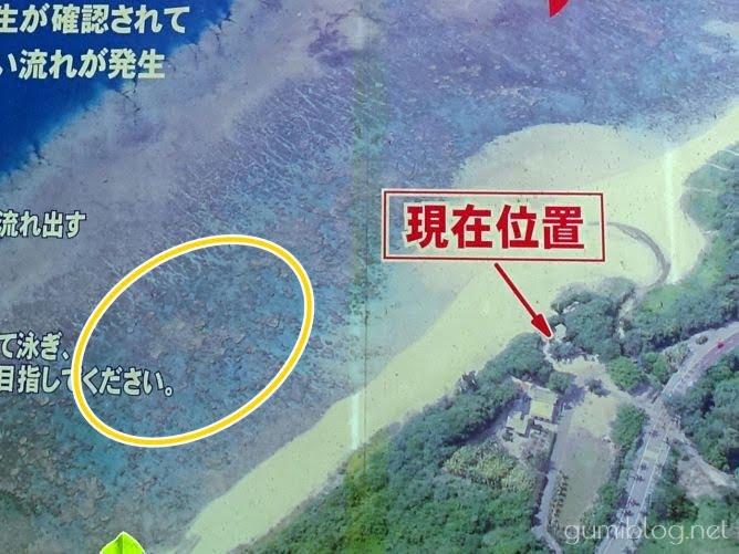 石垣島の米原ビーチのおすすめのシュノーケリングポイントは西側エリア