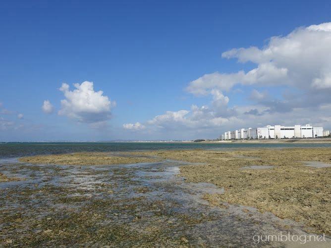 周辺にはパルコシティも!駐車場から車ですぐ - 浦添の海「カーミージー」