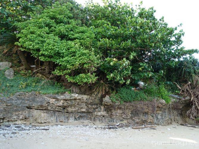 里浜ビーチ