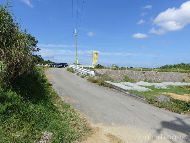 沖縄のクワンソウ農園・今帰仁ざまみファーム