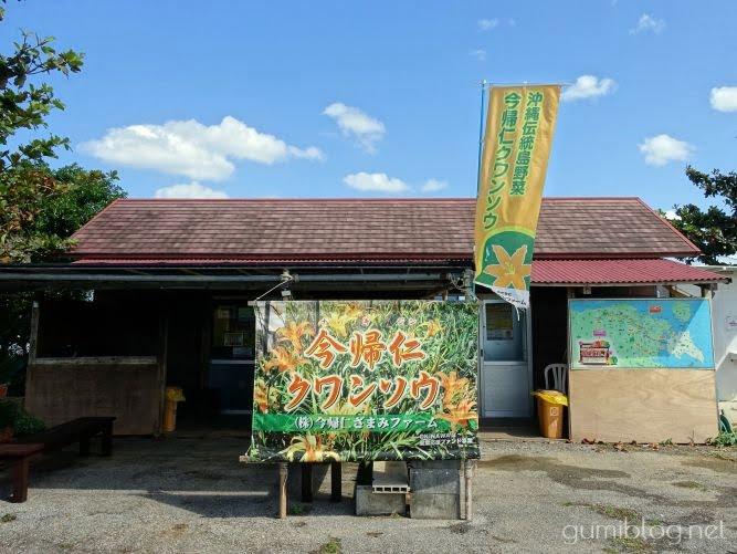 沖縄のクワンソウ農園「今帰仁ざまみファーム」
