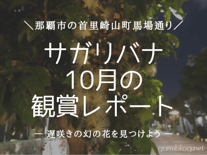 沖縄本島の首里崎山町のサガリバナは10月も見られる!夜のお散歩に