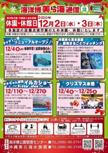 美ら海水族館「クリスマス水槽」12月4日~25日-沖縄のクリスマスイベント2020-2021