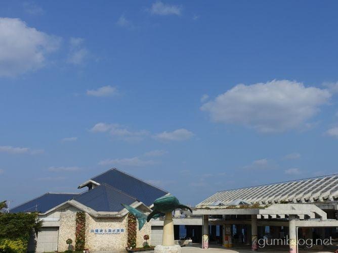 【沖縄6月の楽しみ方】おすすめ「観光地」3選!海・花スポットなど