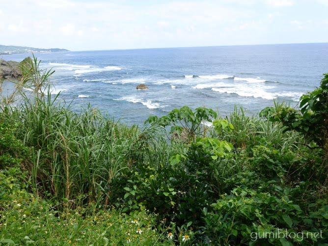 沖縄で蚊がいない時期は?寒い11月後半から2月はいない!?