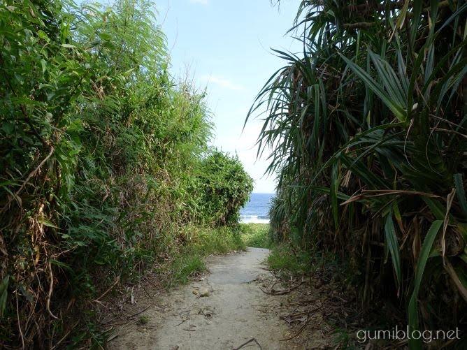 沖縄での蚊対策おすすめグッズ!刺されやすい私の愛用品