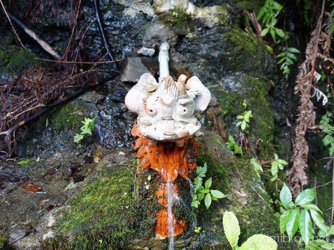 沖縄の飲める湧き水を本島北部・名護岳で発見【マニアックなやんばる観光】