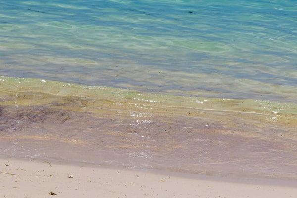 5月の沖縄は海で泳げる?海水浴やシュノーケリング・ダイビングについて