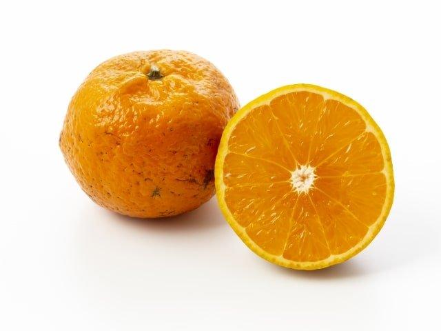 沖縄の12月の果物など「旬の食べ物」9選!タンカン・スターフルーツなど