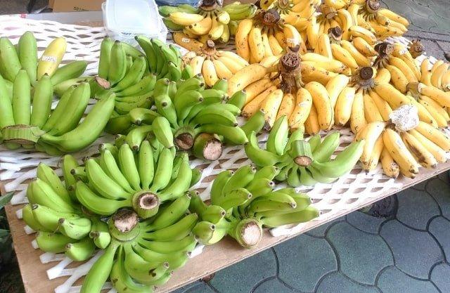 10月の果物など「旬の食べ物」9選!ドラゴンフルーツ・島バナナなど