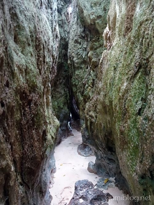 与論島のウドノスビーチ脇の小道