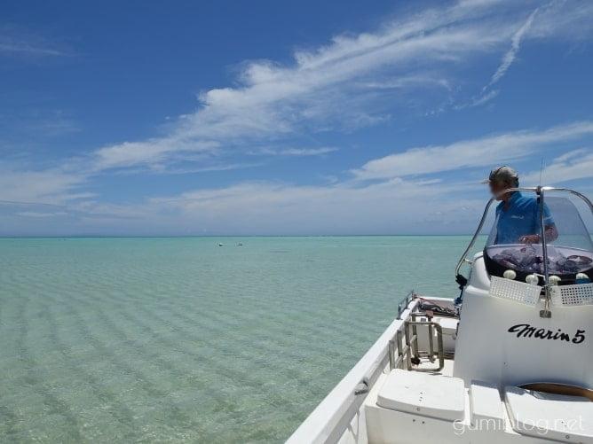 百合ヶ浜渡しで上陸するだけでとても楽しい!幻の白い砂浜