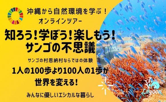 沖縄から自然環境を学ぶサンゴの不思議!SDGs×エシカル