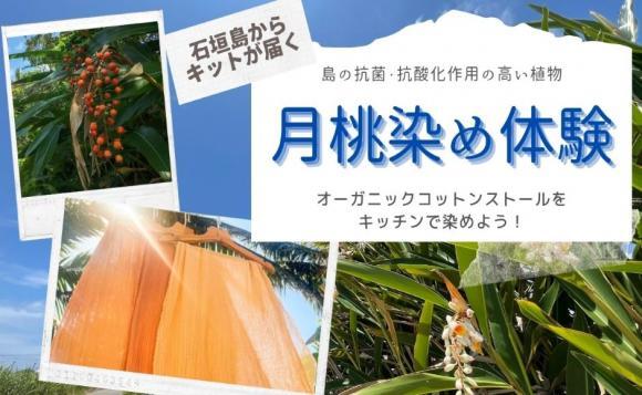 月桃染めセットが届く!島の植物「月桃」でストールを染めよう
