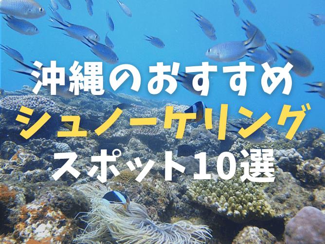【初心者OK】沖縄本島のシュノーケリングスポットおすすめランキング